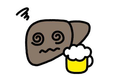 お酒と肝臓のお話